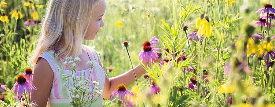 frasi sui fiori amore
