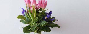 40+ Auguri di onomastico simpatici: le frasi più belle e divertenti