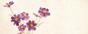 40+ Frasi di buon onomastico: simpatiche e formali